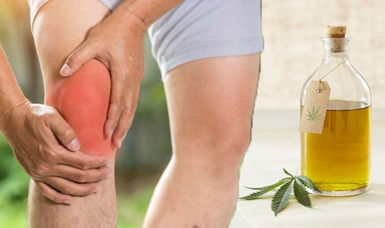 CBD oil an effective natural treatment for joint pain