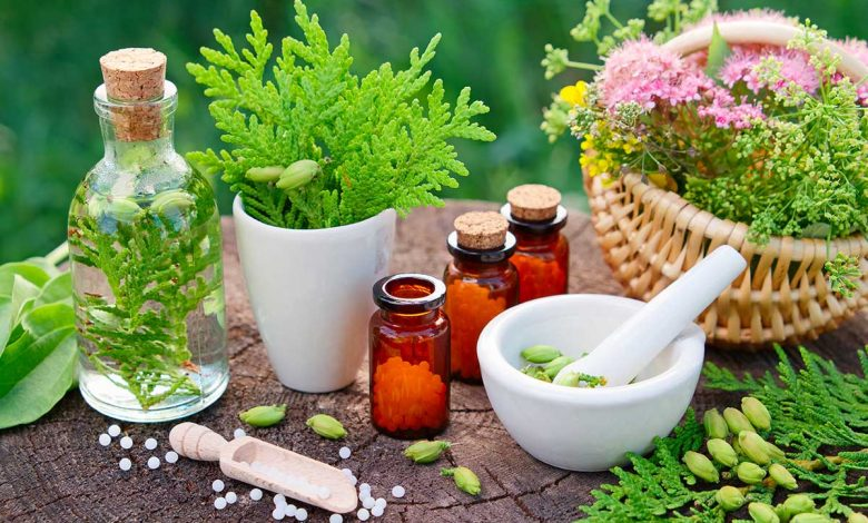 Photo of Are herbal medicines used as a drug?