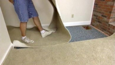Photo of When to get your carpet removed?
